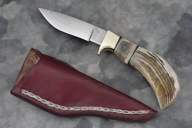 Pronghorn (4