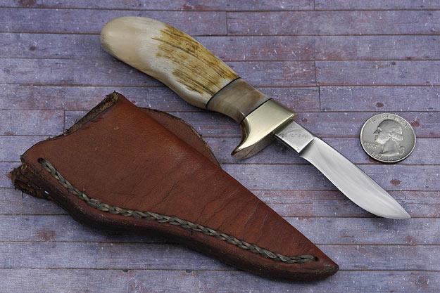 Pocket Pronghorn (2 1/2