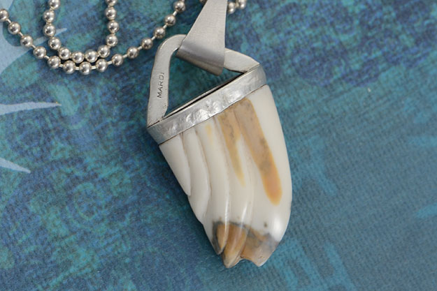Carved Ancient Walrus Ivory Pendant